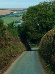 Devon A lot of the roads in Devon are like this one! Nerves of steel are required!