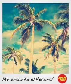 Viví el Verano con Avantrip! www.avantrip.com - Me encanta el Verano! - #Frases #Summer #Verano #Playa #Palmeras #Beach #Sol #Sun #Quotes #Wanderlust #Viajar #Relax #Viaje #Vacaciones