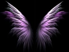 Angel Wings   Image Source picture by roxiez_ - Photobucket