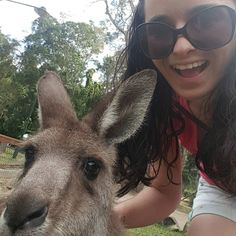 Old mate Skip! #kangarooselfie#currumbinwildlifesanctuary by xxsmurph03xx http://ift.tt/1X9mXhV