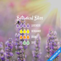 Botanical Bliss - Essential Oil Diffuser Blend