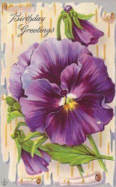 Vintage birthday postcard - birthday greetings