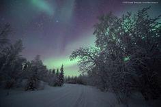 Auroras boreales desde los Territorios del Noroeste, Canadá