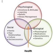 Biopsychosocial Assessment Diagram - Block And Schematic Diagrams •