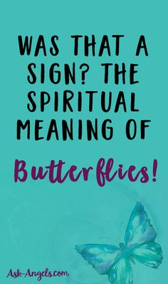 Was That A Sign? Find Out The Spiritual Meaning of Butterflies Now! >>