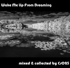 Wake Me Up From Dreaming http://www.mixcloud.com/cs025/wake-me-up-from-dreaming/