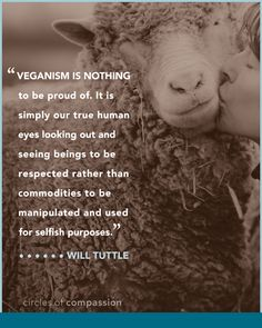 """I've never felt comfortable saying I'm """"proud"""" to be vegan (though I understand why many would), but I've sure always felt very grateful to be vegan."""