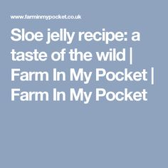 Sloe jelly recipe: a taste of the wild | Farm In My Pocket | Farm In My Pocket