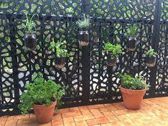 Small balcony herb garden