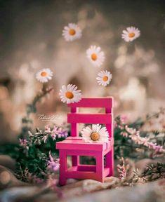 Cute Girl Hd Wallpaper, Flowery Wallpaper, Flower Background Wallpaper, Sad Wallpaper, Flower Backgrounds, Love Wallpapers Romantic, Beautiful Nature Wallpaper, Cute Wallpapers, Beautiful Flowers