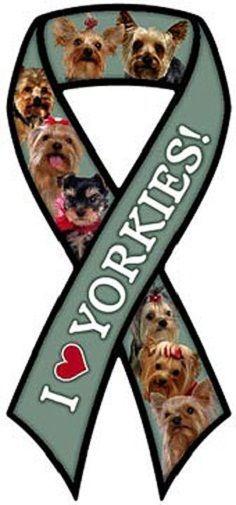 YORKIE car auto ribbon magnet yorkshire terrier