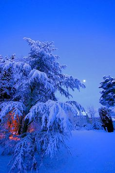 Blue night - time as impressively still, everything seemed empty again, let you peace, joy.