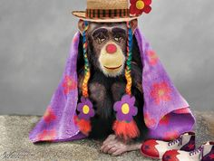 Jobless Chimp Clown - Worth1000 Contests