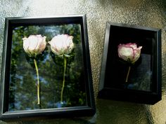 Cute idea.   Flowers from a special occasion dried and put in a shadow box
