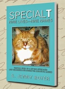 """The World of Ink Network: Book Cover Reveal for """"SpecialT: Nine Lives-Nine Names"""" by S. Jenny Boyer http://worldofinknetwork.blogspot.com/2013/10/book-cover-reveal-for-special-t.html"""