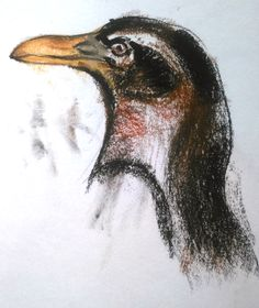 a thinker bird ...( soft pastel )