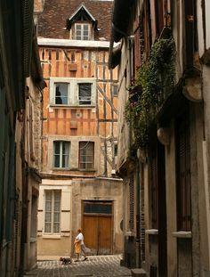 Paris Through My Lens: Madame et le Chien - Joigny,France