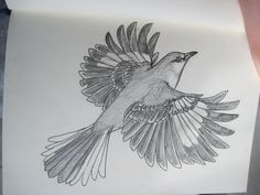 If I ever did get a tattoo or two it'd be a royal poinciana rib piece and a mockingbird flying up from my hip.