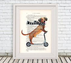 Daschund Print Kids scooter  Poster Illustration Acrylic