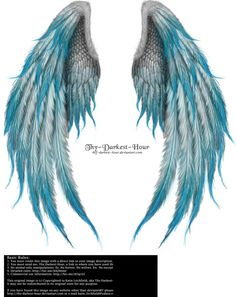 Winged Fantasy - Phoenix Blue by Thy-Darkest-Hour. on Winged Fantasy - Phoenix Blue by Thy-Darkest-Hour. on Winged Fantasy - Phoenix Blue by Thy-Darkest-Hour. Feather Tattoos, Body Art Tattoos, New Tattoos, Angel Wing Tattoos, Angel Wings Drawing, Tattoo Wings, Angel Wings Art, Tatoos, Phoenix Wings