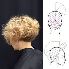 "313 Likes, 7 Comments - Hairtech - Head Sheets (@hairtechapp) on Instagram: ""Curly shape & diagram by @mtrlhair / HairtechApp - Head Sheets • • •…"""