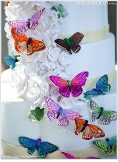 bluebonnet bride butterfly palace story