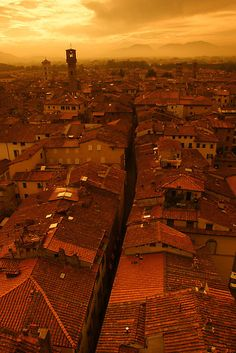 Lucca, ITALY..spent a beautiful summer here and had some fierce tiramisu for the first time!