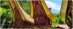 Best Hotel Toraja