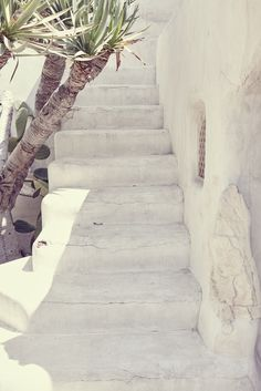 White wash | Palm Springs