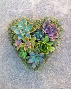 SUCCULENT HEART PLANTER Mother's Day Birthday Get Well Just Because Bridal Shower Anniversary Garden Succulent Planter Wedding Spring by LaSelvaSucculents on Etsy https://www.etsy.com/listing/225702229/succulent-heart-planter-mothers-day