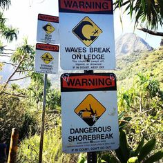 Danger abounds on the beaches of Kauai. Be careful where you swim Re-post by Hold With Hope