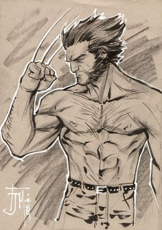 Wolverine by Francis Manapul