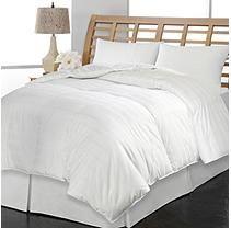 Kathy Ireland Home European White Goose Down Comforter - Full/Queen