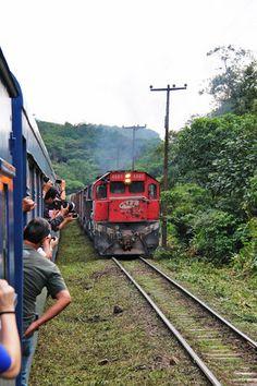 passeio de trem pela serra do mar de curitiba