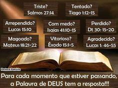biblia                                                                                                                                                     Mais