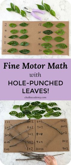 Hole-punched leaves are a fun and easy way to teach math while strengthening fine motor skills! Kids can learn counting, basic math, pairs, and matching with nature! I can involve the children by asking them to bring leaves to hole punch Math Activities For Kids, Math For Kids, Math Games, Preschool Kindergarten, Montessori Elementary, Montessori Preschool, Nature Activities, Outdoor Activities, Waldorf Math
