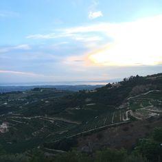 San Giorgio di Valpolicella - Sant'ambrogio di Valpolicella (Verona).  Valpolicella and Garda lake @cristianobertasi on instagram