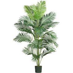 7' Paradise Palm