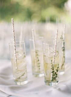 herb garnish cocktails with birch paper straws