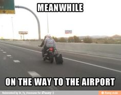 Meanwhile on the way to the airport... / iFunny :)