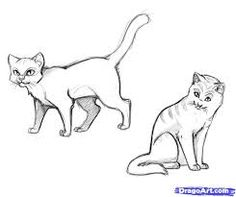 148 Best Cat Cartoon Drawing Images In 2020 Cat Drawing Cat