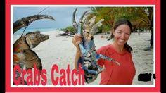 Catching Huge Crab Using Coconut Tricks in Mangrove Forest near Ocean Territory  facebook links http://ift.tt/2dKNZKG... facebook page link http://ift.tt/2edpiKi... blog link http://ift.tt/1tf1u7h... https://mobile.twitter.com/home?login...