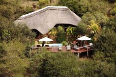 Lalibela Game Reserve and Safari Lodge, Addo Elephant Park, Eastern Cape, South… Elephant Park, Game Lodge, Game Reserve, Tree Tops, East Africa, Lodges, Safari, Cape, Tourism
