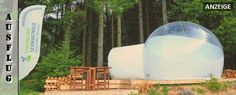 glamping-schwarzwald-bubble-tent