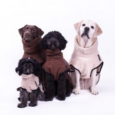 Hundebademantel dryup cape braun sand Dogs, Animals, Anna, Sweet, Happy Dogs, Cats, Dog Owners, Get Tan, Candy