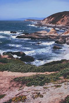 Gorgeous place to walk and watch whales - Bodega Bay, California