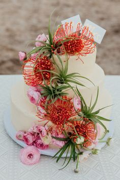 buttercream cake decorated with pincushion proteas