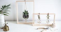 Haz un bonito soporte de madera para colgar tus plantas