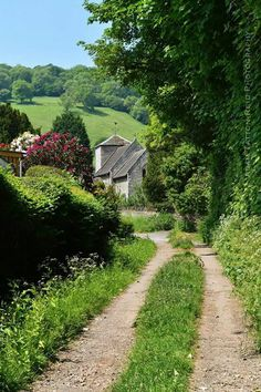 British country lanes.  It's amazing the beauty that you can find just down the road in your own village. Here is a great view of Llyswen church from a farmers lane, hedgerows and trees in full Summer greenery.