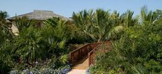 Villa Alamandra - driveway and Spanish Cedar Bridge to entrance way